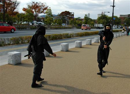 Ninjas In Himeiji